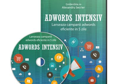 Adwords Intensiv