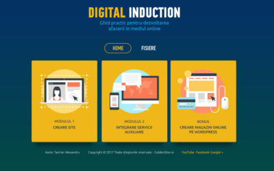 Ghid practic pentru dezvoltarea afacerii in mediul online